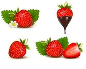 Set of ripe sweet strawberry and flower with leaves and chocolat — Stock Vector