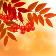 Autumn background with colorful leaves and rowan. Vector illustr — Stock Vector