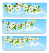 Three spring banners with blossoming tree brunch with spring flo — Stockvektor