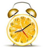 Alarm clock made of an orange. Concept of diet. Vector. — Stock Vector