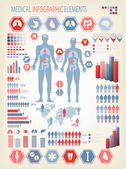 Medical infographics elements. Human body with internal organs.  — Stockvector