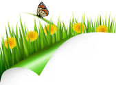 Summer background with dandelions and a butterfly. Vector. — Stock Vector