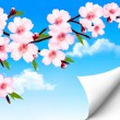 Spring background of a blossoming tree branch with spring flower — Stock Vector