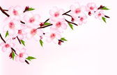 Spring background of a blossoming tree branch with spring flower — Vecteur