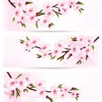Three sakura branch banners. Vector. — Stock Vector #43340001