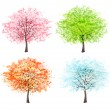 Four seasons - spring, summer, autumn, winter. Art tree beautifu — Stock Vector #47102209