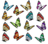 Set of realistic colorful butterflies. Vector — Vettoriale Stock