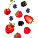 Set of juicy berries. Vector. — Stock Vector #50909087