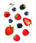 Set of juicy berries. Vector.  — Stock Vector