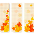 Three autumn banners with color leaves. Vector — Stock Vector #51261229