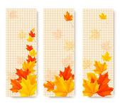 Drie herfst banners met kleur verlaat. vector — Stockvector