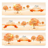 Autumn background with colorful leaves and trees.Vector illustra — Stok Vektör