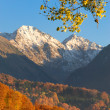 Mountain Autumn — Stock Photo