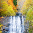 Waterfall in autumn — Stock Photo