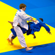 Stock Photo: BUCHAREST, ROMANI- JUNE 4: Contestants participate in Judo