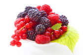 Fresh berry fruits — Stock Photo