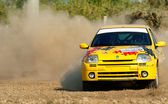 Barsa Rally 2011 — Stock Photo