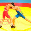 Постер, плакат: Wrestlers fight during Junior Wrestling World Championship