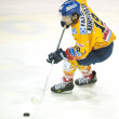 Stock Photo: ASIAGO, ITALY - DECEMBER 28: Unidentified hockey player compete