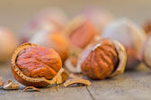 Hazelnuts close up — Stock Photo