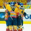Foto de Stock  : Hockey players