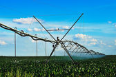 Crop Irrigation using the center pivot sprinkler system — Stock Photo