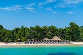 Koukounaries beach, naturreservatet pin, grekland — Stockfoto