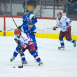 Постер, плакат: Hockey players