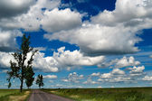 Countryside Landscape With Blue Cloudy Sky — Stock Photo