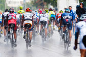Cyclists from various teams cycle — Stock Photo