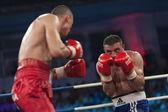 Boxing match — Stock Photo