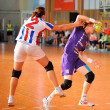 Stock Photo: Handball players in action