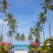 Hotel is in the tropics — Stockfoto