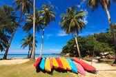 Colored kayaks on the seashore — Stock Photo
