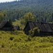 Stock Photo: Old village in Siberia