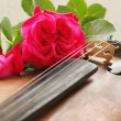 Stock Photo: Beautiful violin