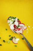 Delicious spring salad — Stock Photo