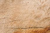 木材纹理lumber konsistens — Stockfoto