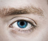 Single Blue Eye — Stock Photo