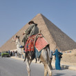 Giza, Egypt — Stockfoto