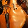 Violins, violas and cellos - Stock Photo