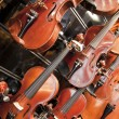 Violins, violas and cellos — Stock Photo #23121864