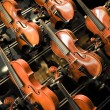 Violins, violas and cellos — Stock Photo #23121978