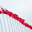 Stock Photo: Turkish flags in row