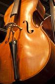 Violins, violas and cellos — Stock Photo