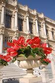 Ciragan palace, istanbul — Stock fotografie