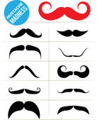 Mustache Madness — Stock Vector