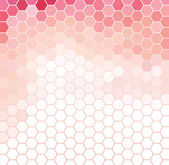 Pink and white hexagonal grid — Stock Vector