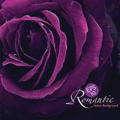 Romantische rose — Stockvektor
