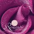 Romantic Rose — Stock Vector